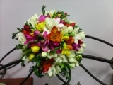 Buchet frezie color